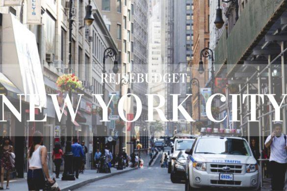 NYC-Budget-1